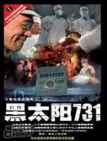 黑色731标清DVD