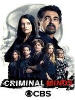 犯罪心理 第十二季