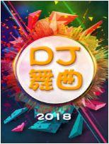 DJ 舞曲 2018
